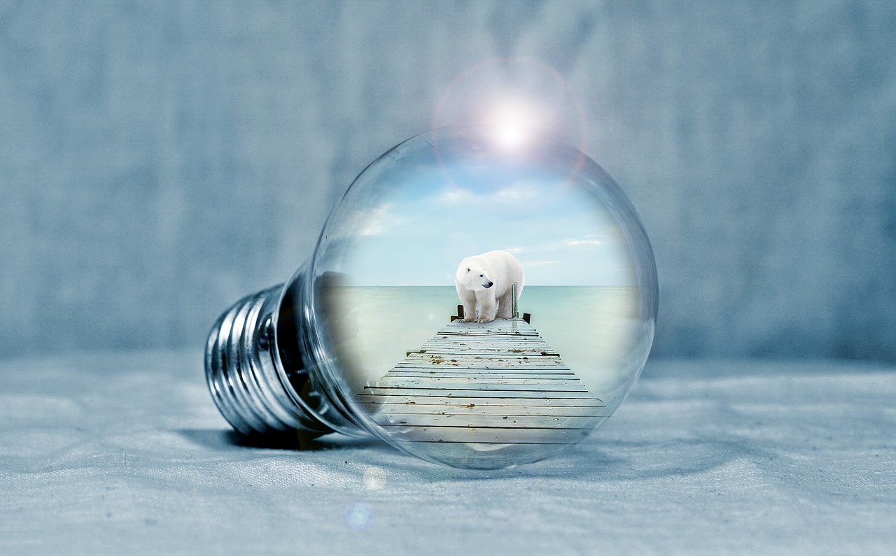 gloeilamp ijsbeer milieu